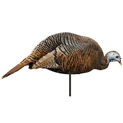 montana decoy dinner belle hen turkey decoy