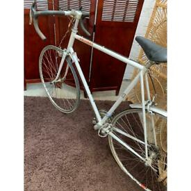 """Peugeot Racer 23"""" 12 Gear Bicycle"""
