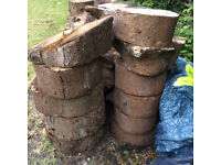 LARGE AMOUNT OF LOGS FOR SALE