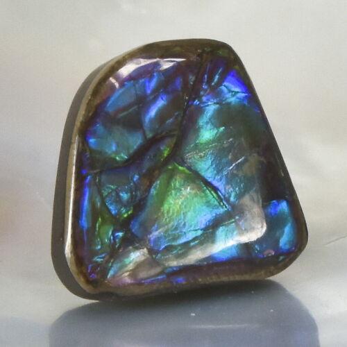 Ammolite Ammonite 3.43 g Rare Gemstone Cabochon Canada 19.28 x 17.74 x 5.54 mm