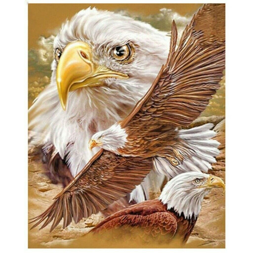 5D Full Drill Winged Eagle Diamond Painting Embroidery Cross Stitch Kits Decors