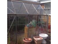 8x6 Alluminium green house