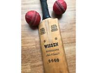 Antique cricket bat