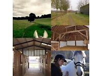 5* full livery & part livery at T.H.Equestrian, Wisborough Green West Sussex/Surrey. Horse heaven!