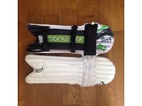 Boys Cricket Pads and Gloves