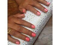 Mobile nail tech - gel nails, shellac, pedi ZONE 1-3