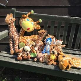Large bundle of giraffe cuddly toys, zoo animals , teddy bears , puppets,cuddly animals