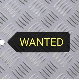 """STAINLESS STEEL PLATE WANTED - 31""""x 9"""""""