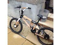 Flite Punisher freestyle BMX kids bike