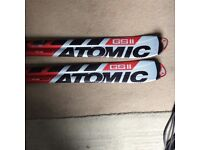 GSII skis. Used but good condition £100 ono