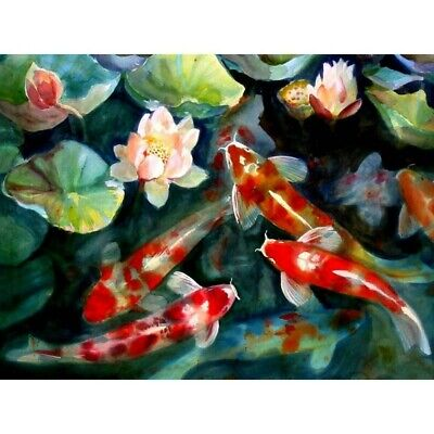 Full Round Drill Diamond Painting Koi Fish 5D Cross Stitch Arts Handicrafts