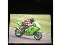 Zx9r track bike with daylight mot