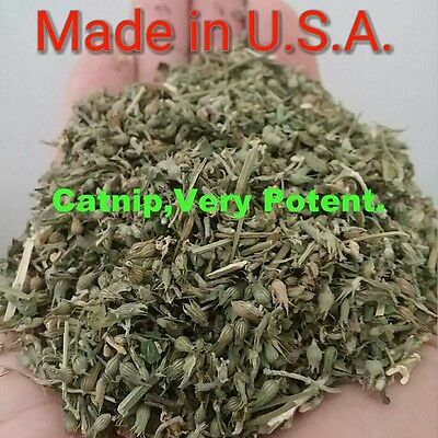 Catnip 1 full ounce Nepeta Cataria Farm Fresh Very Potent Eco Grown Cats Love it
