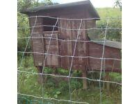 One chicken hut