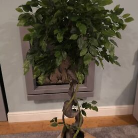Artificial Plants, Brand New, different styles and sizes. Prices in description