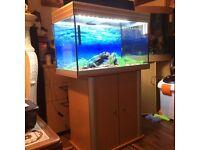 Aqua one aquarium and cabinet for sale