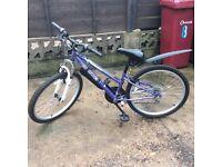 Lovely girls 12 inch frame bike in purple suit 7-10years