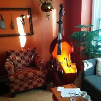 Double Bass Stentor Conservatory model