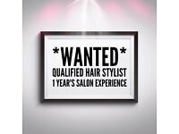 Qualified Hair Stylist with one year's salon experience