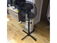 Stand up black Fan