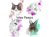 Custom hand drawn & digital pet portraits.