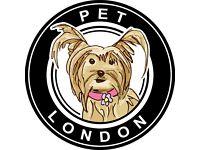 12-Week Social Media Intern for Fun Pet Accessory Company