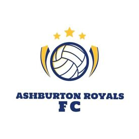 Adults sunday morning football club based in beckenham/elmders end area looking for new players