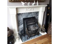 gas fire and surround harth and back plate