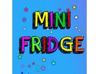 Mini Refrigerator In Excellent Condition - For Home or Car (car adaptor included and mains lead)