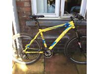 Ferrini mountain bike