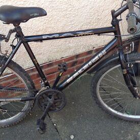 Raleigh ogre bike