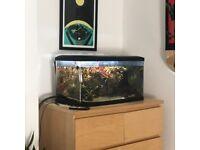 Aquarium Fish Tank - 58 Litre (Long)
