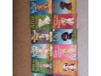 Huge collection of holly web puppy books