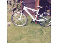 MOUNTAIN BIKE IN NEW CONDITION