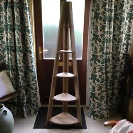 Ladder type corner shelves