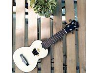 Small Kids Guitar Ukulele Nylon String 17'' with Zipped Carry Case