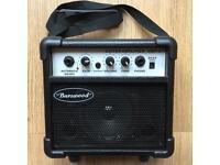 Guitar Amp Mains or Battery