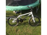 BMX X Rated Hyper with front disc brake