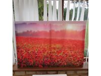 Poppy print on canvas on wooden frame