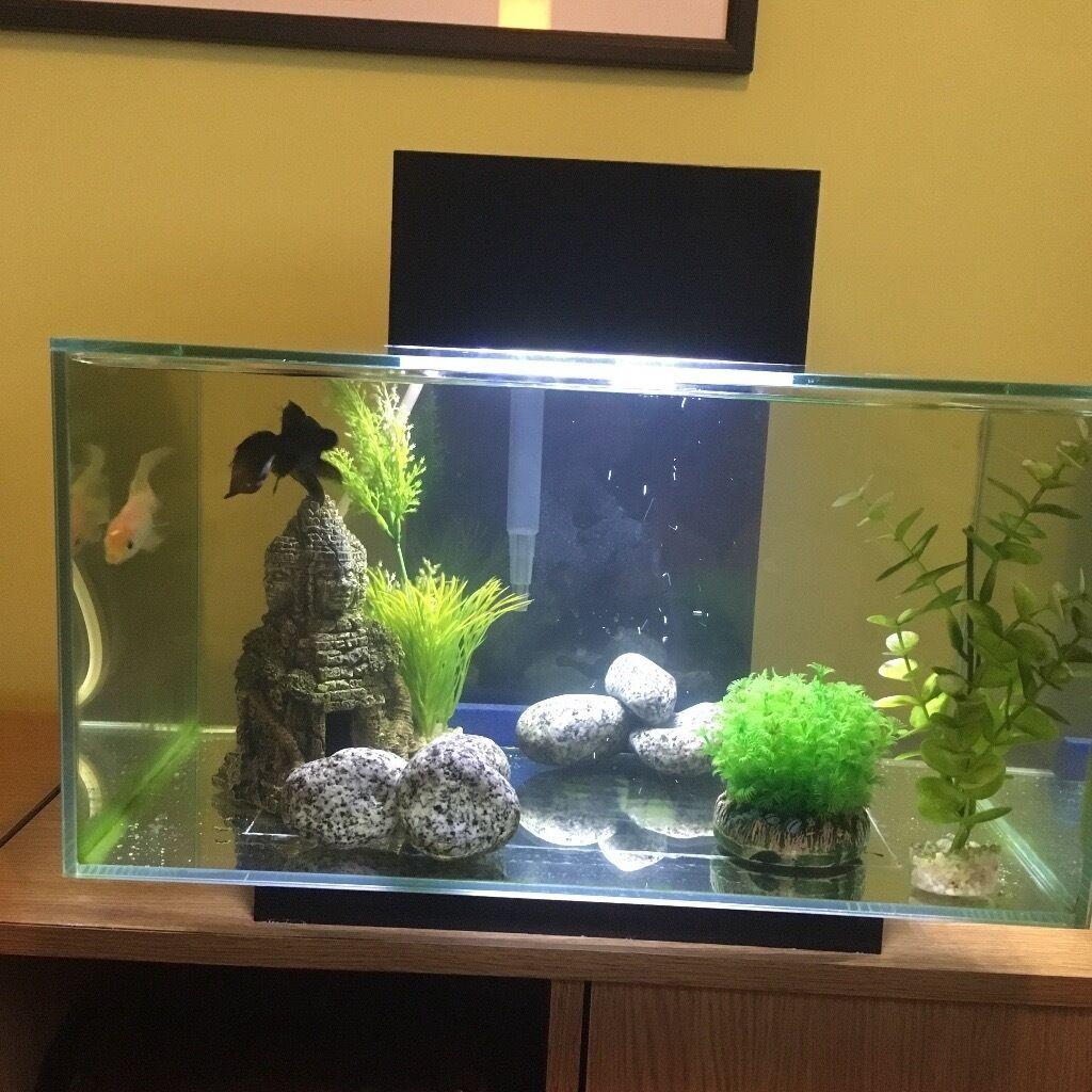 Remarkable Modern Fish Tank Images - Best inspiration home design .