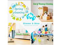 Experts in End of Tenancy/ Moving In and Moving Out Cleaning/ Deep Cleaning / Spring Cleaning
