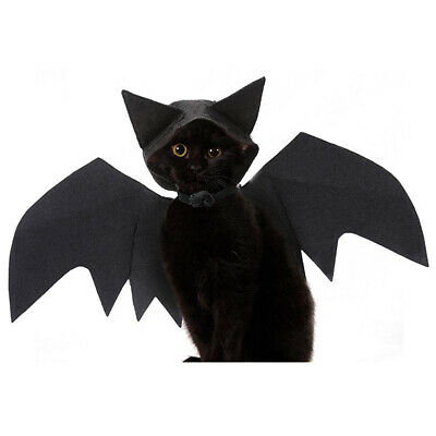 unde Katze Schwarz Fledermaus Flügel Kostüm Niedlich (Hund Halloween-kostüme Fledermaus Flügel)