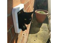 Missing from Chepstow road, Knowle West