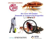Pest control in london Rat mice cockroaches ants wasps
