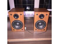 Ricco PC Monitor Speakers