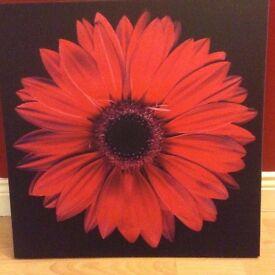 Pink/red flower canvas