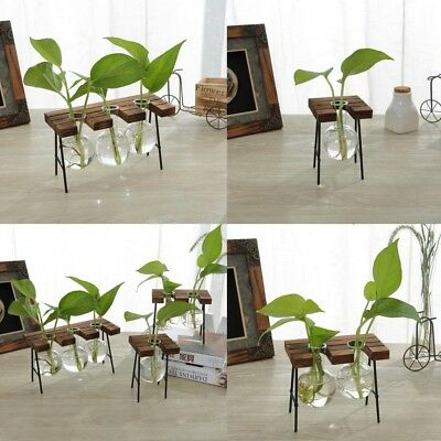 Retro Stool Shape Wooden Tray Hanging Clear Glass Vase Hydroponic Container