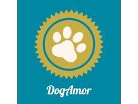 ❤️🐶Dog Walking, Dog Training, Pet Sitting, Happy Dog Happy People 🐾☀️