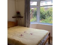 Totnes: Light, airy room to rent, 10 min's from town centre