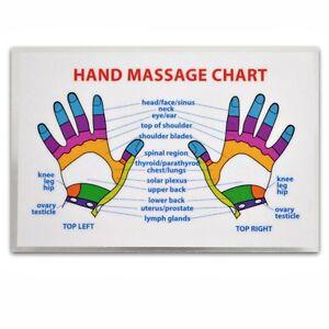 Reflexology Chart Health Amp Beauty Ebay